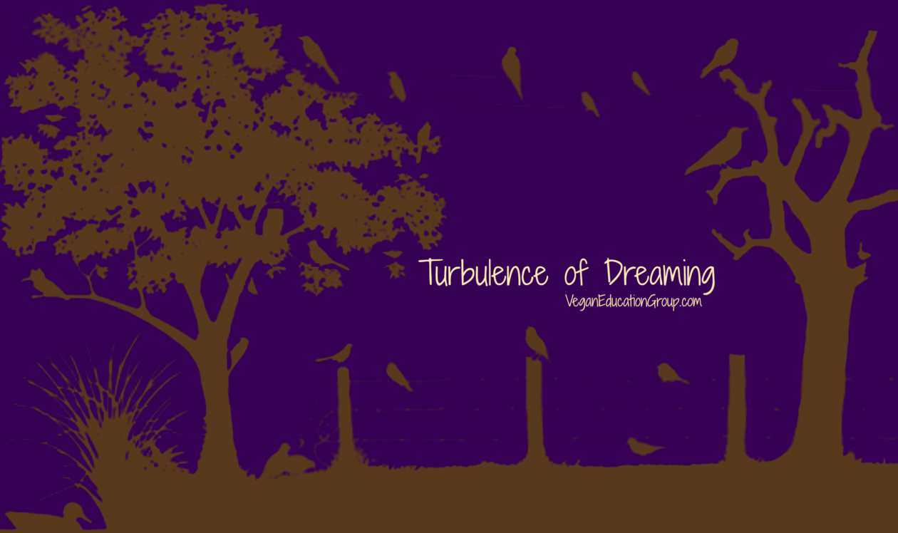 The Turbulence of Dreaming | South Florida Vegan Education Group Blog