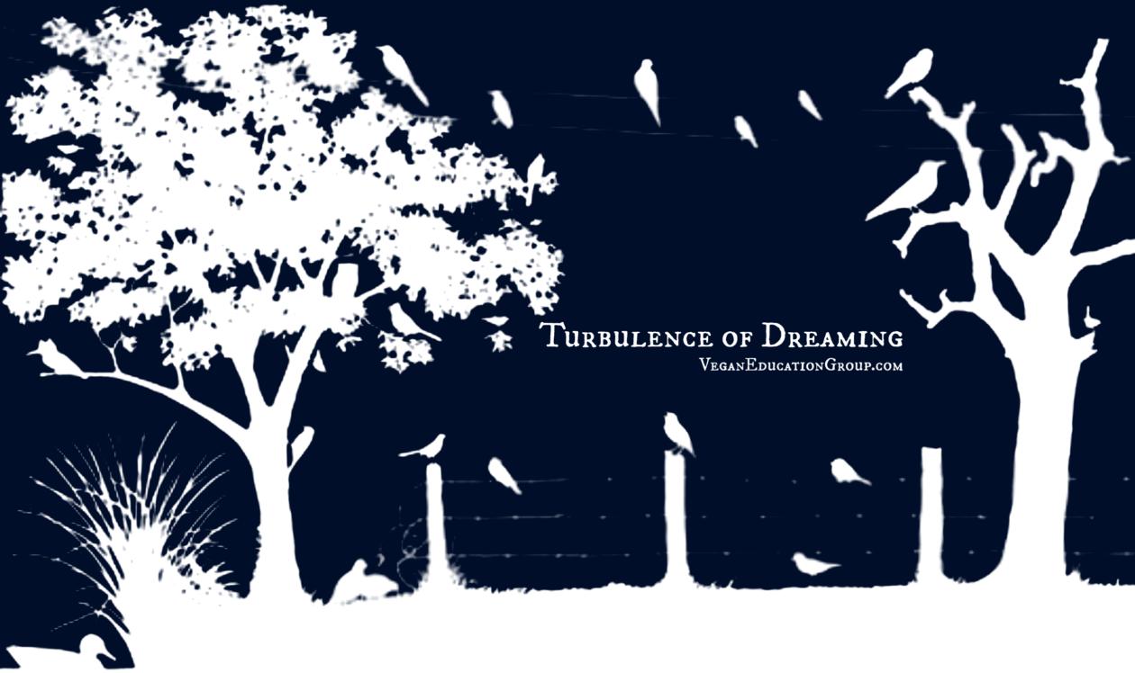 The Turbulence of Dreaming | South Florida Vegan Education Group Blog